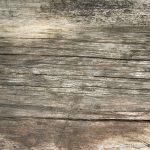 Laminaty. Zaawansowana obróbka drewna
